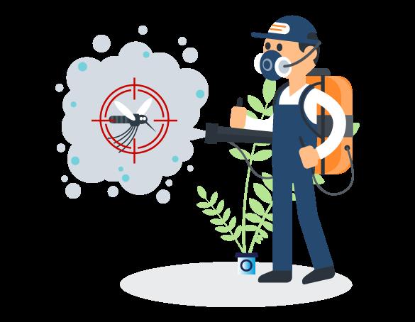 Professional Pest Control Alexandra Hills